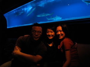 Post Christmas Celebration at Muse on Park 97 - two extra points for this lounge/bar for the baby shark aquarium